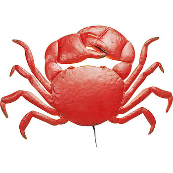 Crab LED Kare Design